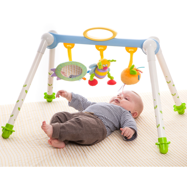 Taf Toys Take To Play Baby Gym Itots Pte Ltd